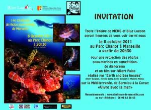 14 eme chalenge de photos sous-marines de Marseille