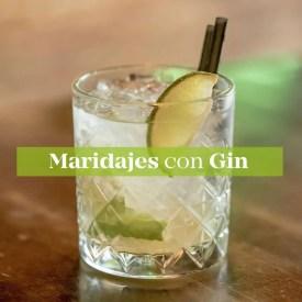 maridajes con gin guru of spirits