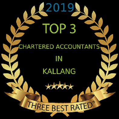 accounting professional services