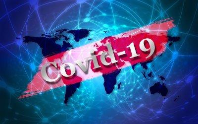 Gaia's Perspective on the Coronavirus