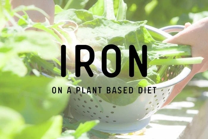 Iron on a Plant Based Diet