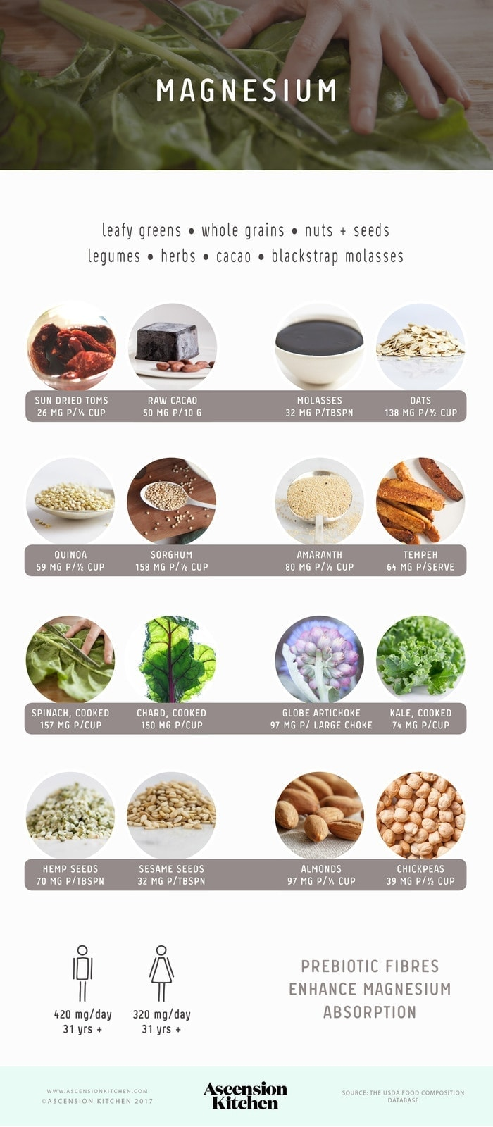 Top Sources of Magnesium Infographic