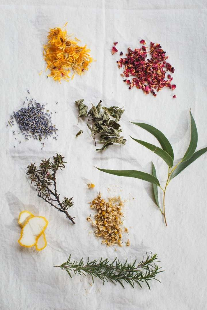 Dried and fresh herbs used in a herbal facial steam in a flat lay