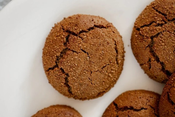 Close up of a perfect festive gingerbread cookie