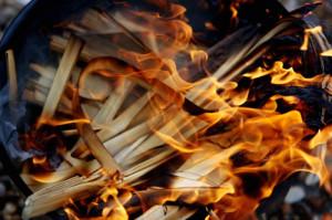 burn palms