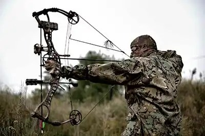 Best Value Hunting & Target Compound Bows for the Money in 2020