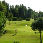 ASCH Golf