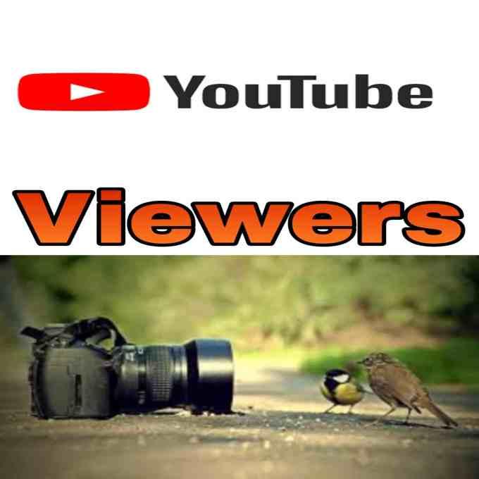 YouTube觀看者獲利秘訣