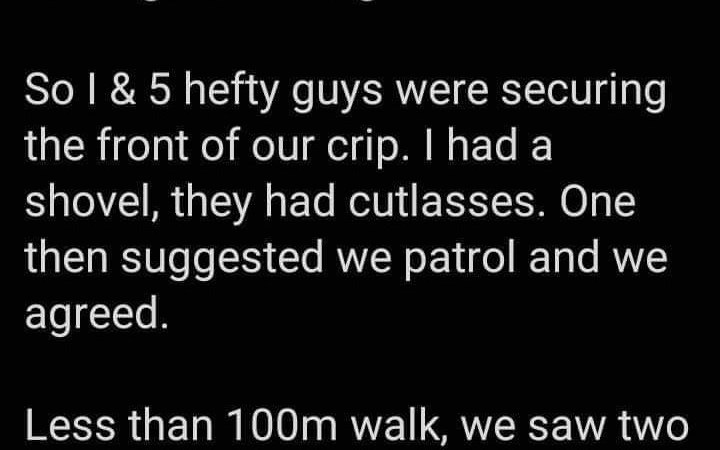 Man narrates his hilarious experience while guarding his street from robbers amid lockdown 1