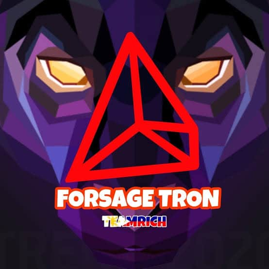 How to register for forsage Tron
