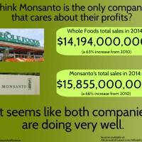 Monsanto GMO vs Whole Foods