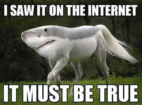 shark-horse-crossover-shorse