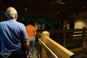 Ark Encounter Chroma Key