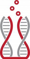 Applied Sciences Connect