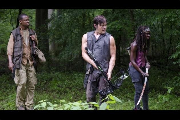 Daryl, Bob & Michonne