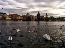 Praia do Vltava Praga 2