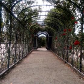 schonbrunn-jardins-2