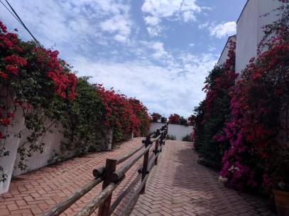 Museu Larco entrada
