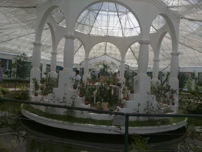 Jardim Botânico Rio estufa