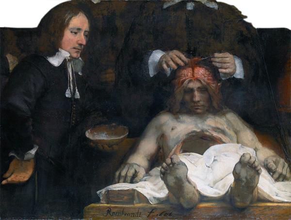 rijksmuseum rembrandt lição de anatomia