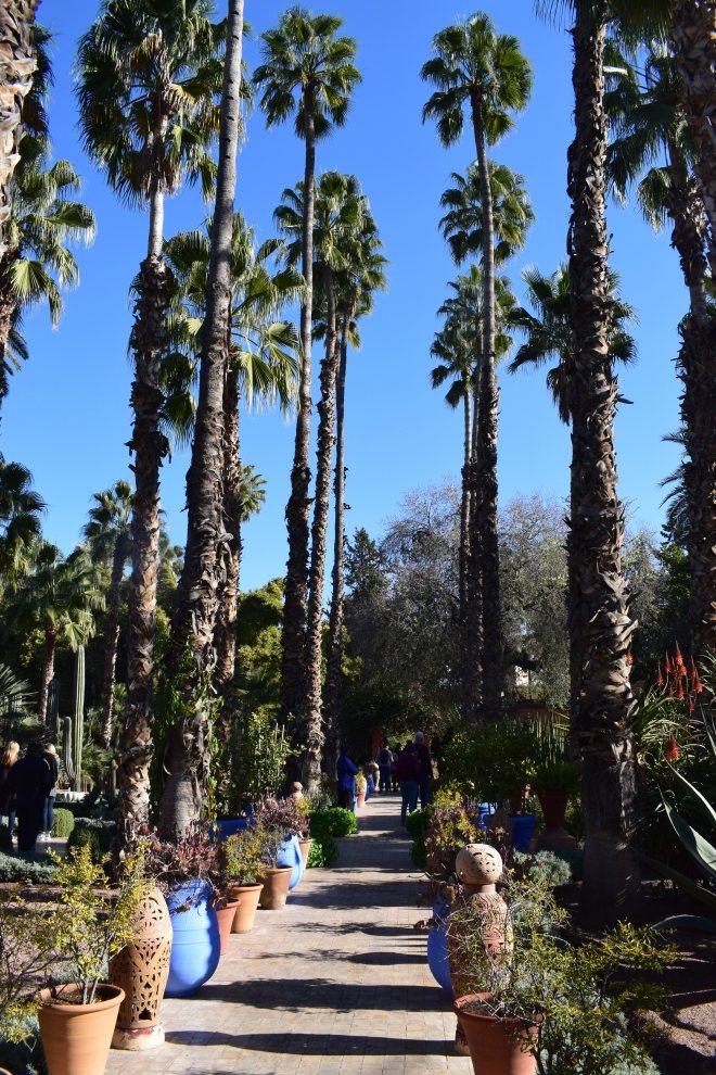 Marrakech Jardins Majorelle 4