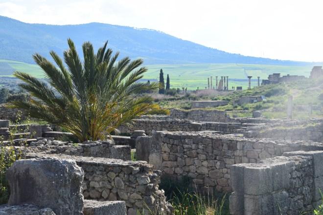 Volubilis ruinas romanas Marrocos 5