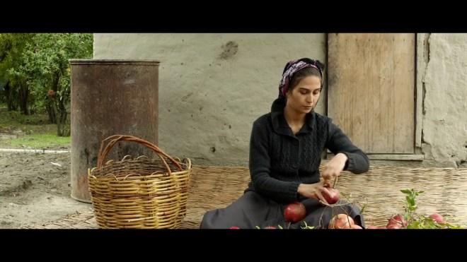 livros filmes viagem cáucaso pomegranate orchard