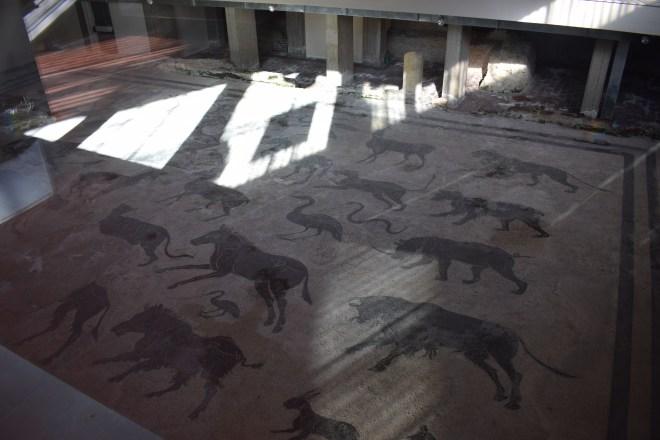 Perugia chão mosaicos romano universidade