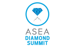 Diamond Summit Badge