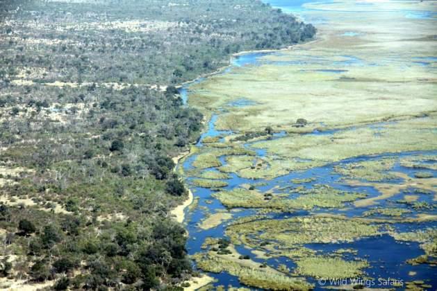 The Botswana wetlands