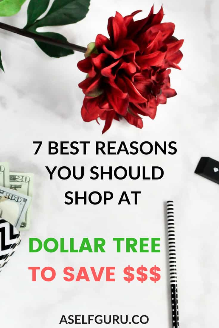 7 Best Reasons To Shop At Dollar Tree To Save Money A Self Guru