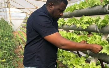John Dumelo on farm