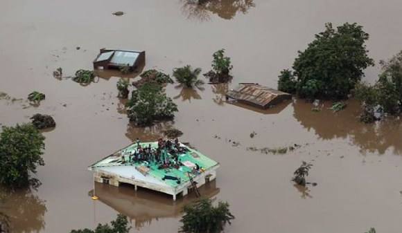 People clambered on roofs and up trees in order to save themselves in Beira in Mozambique