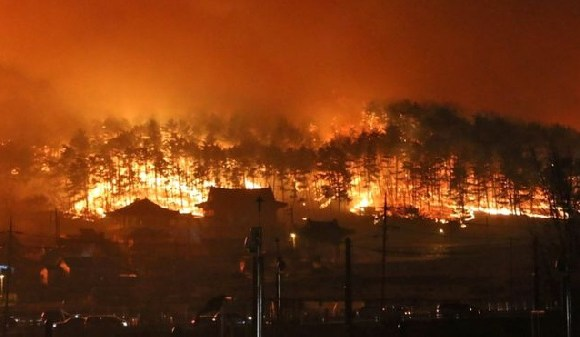 The fire broke out late on Thursday and spread along the Korean coast