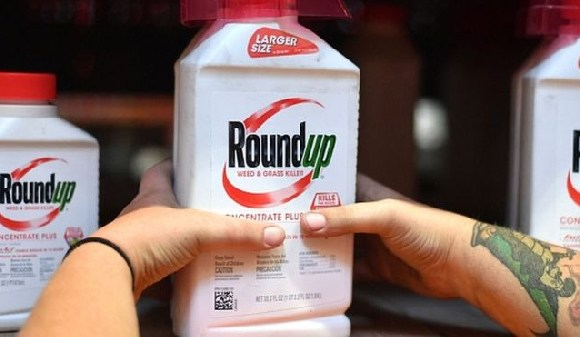 Bayer acquired Roundup as part of its takeover of US company Monsanto