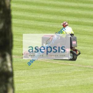 Lawn mower hire services