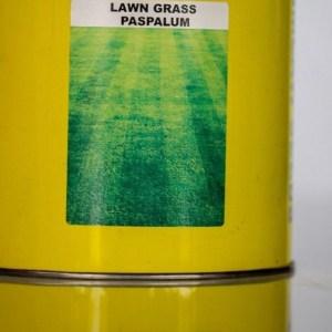 Paspalum Lawn Grass