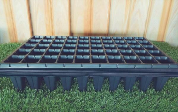 Seedling trays in Kenya