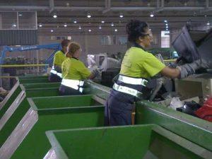 Actividad en el reciclado