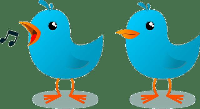 ¿Todavía no tiene perfil en Twitter tu despacho profesional?