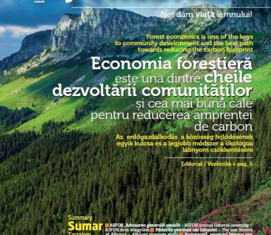 Coperta Revista Meridiane Forestiere nr. 2 iunie 2021