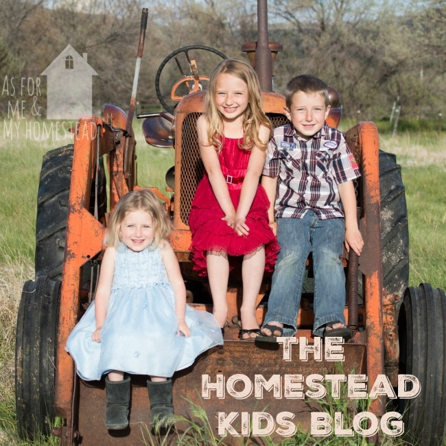 The Homestead Kids Blog is a brand new feature! Stop by on Saturdays or click through to see what they're up to!