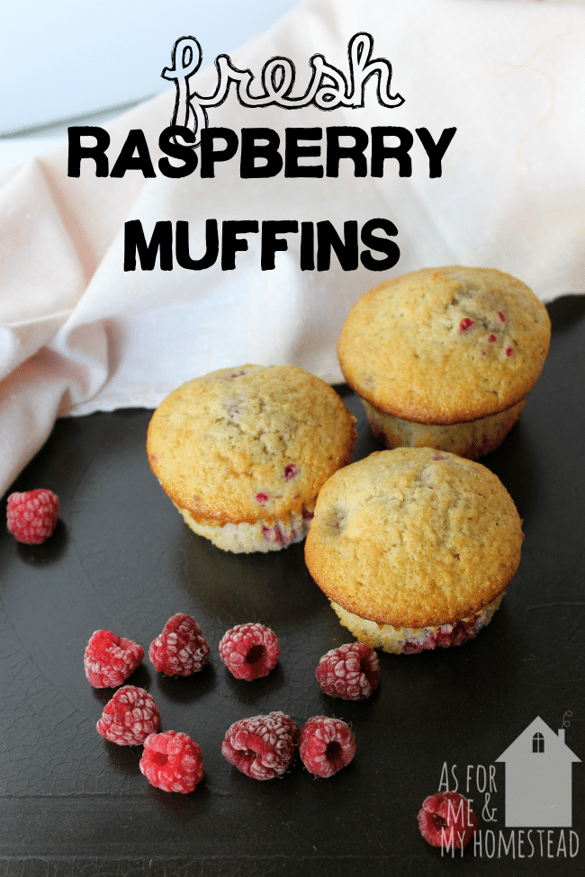 Delicious Fresh Raspberry Muffins recipe is packed full of raspberries!