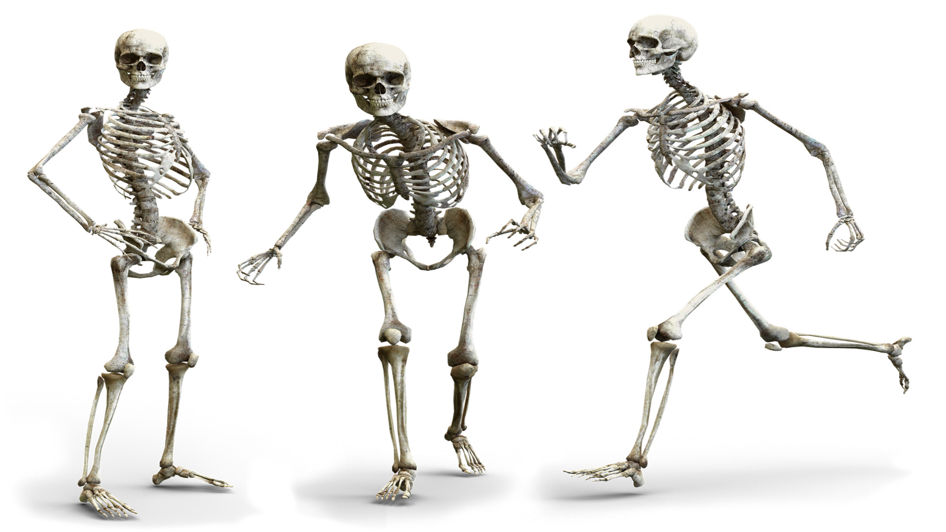 Los cadáveres no se quedan quietos el cuerpo se desplaza ligeramente.1920