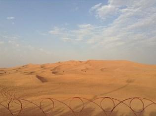 The Desert Safari