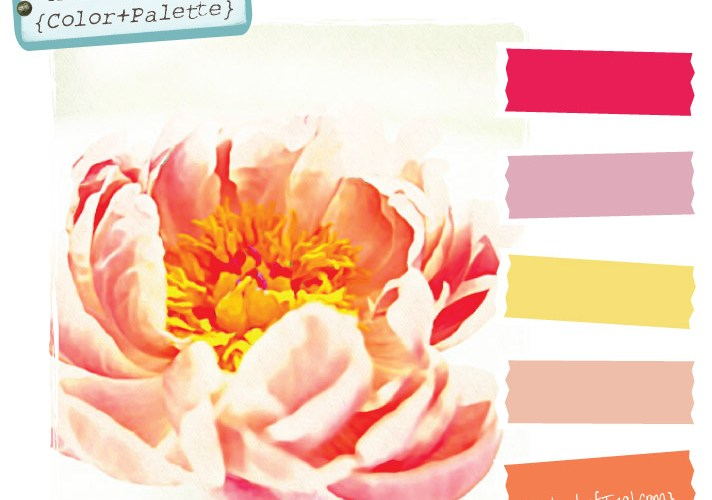 Color Palette {Peony}