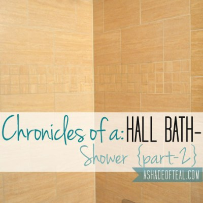 Hall Bath Chronicles- Shower Pt2