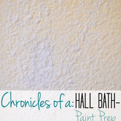 Hall Bath Chronicles- Paint Prep