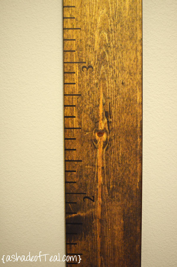 Diy Large Wooden Ruler Growth Chart