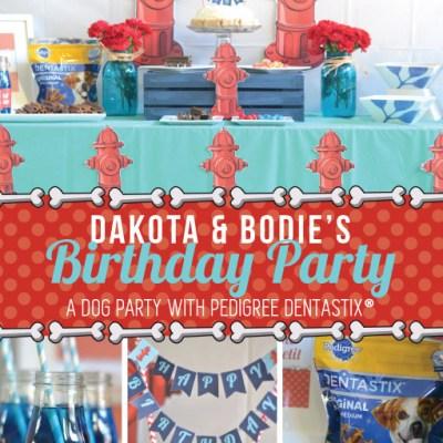 A Dog Birthday Party!